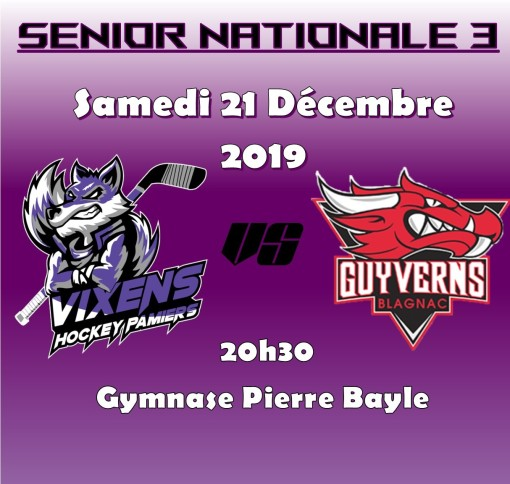 Nationale 3 Vixens pamiers face à Blagnac